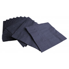 Napkins, cellulose, 2-plies - 25 x 25cm (100 pcs.)